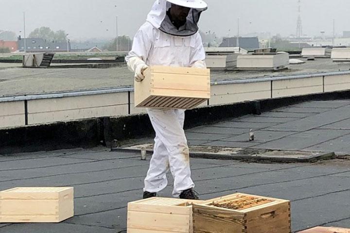 revor-bijen